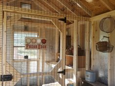 Come Tour my New Chicken Coop from Horizon Structures - this is a sweet coop!   Fresh Eggs Daily