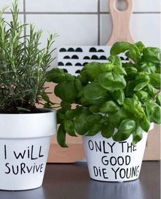 A Sharpie marker can give pots a little attitude too.   23 Silly DIY Projects That Will Make You Laugh Out Loud