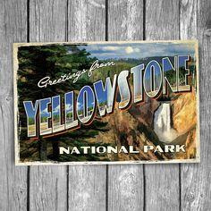 General Store and Coffee Shop at Glacier National Park Vintage Montana Postcard Unused