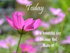 Today is a beautiful day because God made it.