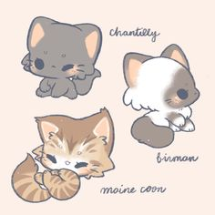 Cute Kawaii Animals, Cute Animal Drawings Kawaii, Cute Little Drawings, Cute Cartoon Drawings, Cute Baby Animals, Cute Animals To Draw, Griffonnages Kawaii, Chat Kawaii, Cute Dog Drawing