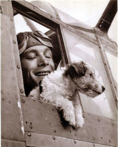 A Fox Terrier war dog hangs out pilots window of parked plane. Looks like it may be a wired haired Jack Russell but hard to confirm. Fox Terriers, Chien Fox Terrier, Wire Fox Terrier, Wire Haired Terrier, Amor Animal, War Dogs, Military Dogs, Vintage Dog, Service Dogs