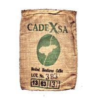 Le CadeXa