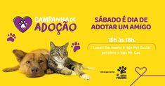 Web Design, Graphic Design, Social Media Design, Animal Design, Layout, Animals, Shopping, Pet Adoption, Pet Store