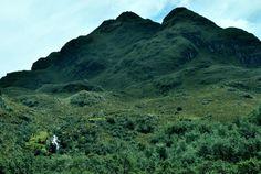 Cajas National Park, #Ecuador