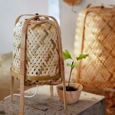 Meer bamboe in je leven! - IKEA Bamboo Lamp, Bamboo Plants, Bamboo Table, Interior Ikea, Decor Interior Design, Nature Living, Table Ikea, Table Lamps, Dining Chairs