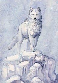 wolf by Ashley Smith (kitsune seven)