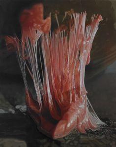 bubblegum art. Textile Sculpture, Medical Anatomy, Hyperrealism, Medical Illustration, Chewing Gum, Creative Food, Bubble Gum, Dark Art, Installation Art