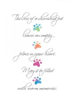 """""""The loss of a cherished pet leaves an empty place in your heart. May it be filled with warm memories."""" Loss of Cherished Pet Sympathy Card. Includes postage within the U.S. only."""