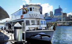 See Aboriginal Sydney in the relaxed and friendly company of your Aboriginal hosts and crew. Cruise the most beautiful harbour in the world aboard the Mari. Visit Sydney, Tribal Warrior, Aboriginal Culture, Cruise, Most Beautiful, Tours, World, Building, Travel