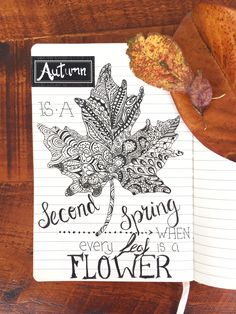 Autumn is so beautiful, the leaves turning are as precious as flowers. April & Autumn go hand in hand here in New Zealand, so this doodle is in my bullet journal.