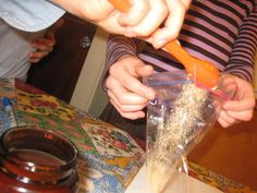 Pyramids, Pasteur and Plastic Baggies - What Makes Yeast Grow? More experiments with yeast.