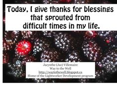 """A Light Worker's Diary - the juiciest gifts can sprout from less savoury experiences, just like black raspberries can grow from a seed a bird """"left behind""""..."""