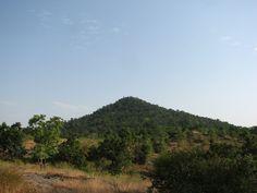 Bandhavgarh | by anirbanbose