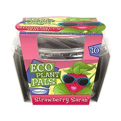 Follow the instructions to grow Strawberry Sarah with this amazing Eco Plant Pal kit