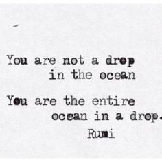 you are the entire ocean | the wellness warrior