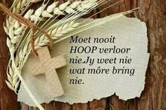 Moet nooit moed verloor nie Quotes And Notes, Love Quotes, Afrikaans Quotes, Rare Words, Wale, Scripture Verses, Projects To Try, Place Card Holders, Hoop