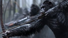 Online War for the Planet of the Apes Full Movie A nation of genetically evolved apes led by Caesar becomes embroiled in a battle with an army of humans..