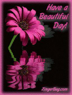 glitter graphics have a beautiful day | Glitter Graphic Comment: Have a Beautiful Day Reflecting Flower