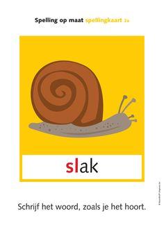 Spelling op maat spellingkaart 2a Schrijf het woord, zoals je het hoort. © Noordhoff Uitgevers bv slak