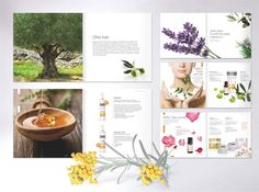 Product Catalogue Design and Development - iDEA studio