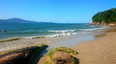 Praia da Daniela - Florianópolis, SC