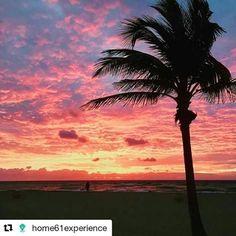 Credit to #home61experience  ・・・ Good Morning Hollywood! Hollywood Beach is a paradise perfect to getaway from Miami. 🌞  #Home61 #HollywoodBeach 📷: kbudsky #HollywoodTapFL #HollywoodFlorida #HollywoodFL #HollywoodBeach #DowntownHollywood #Miami #FortLauderdale #FtLauderdale #dania #daniabeach #Aventura #Hallandale #hallandalebeach #Pembrokepines #miramar #broward  (at The Beautiful Beach Of Hollywood)