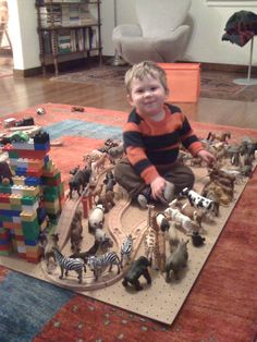 Animal Train Track # 72 (with Lego Cathedral)