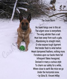 The Snow Storm  www.facebook.com/cash.von.badeleben