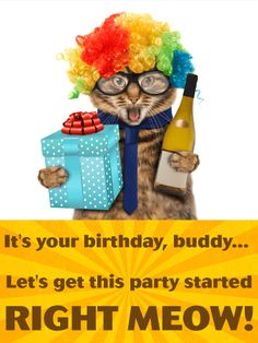 Send Free Party Cat Funny Birthday Card for Friends to Loved Ones on Birthday & Greeting Cards by Davia. It's free, and you also can use your own customized birthday calendar and birthday reminders. Happy Birthday Wishes Cards, Birthday Cards For Friends, Funny Birthday Cards, Birthday Greeting Cards, Birthday Greetings, Birthday Shout Out, Cat Birthday, It's Your Birthday, Cat Wine