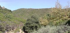 Fab find TWO PLOTS OF LAND FOR SALE IN GREECE, ON THE  ISLAND OF CRETE, 5 ACRES. £22000