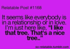 That's a nice tree