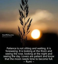 Patience is not sitting and waiting, it is foreseeing. It is looking at the thorn and seeing the rose, looking at the night and seeing the day. Lovers are patient and know that the moon needs time to become full. ~ Rumi