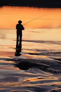 Silhouette of a fisherman Trout Fishing, Fishing Lures, Fishing Hole, Surf Fishing, Fishing Tackle, Fishing Pictures, Gone Fishing, Fishing Trips, Fish Camp