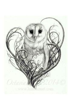 Barn Owl Print, Owl Art, Owl Print, Limited Edition Giclée Print, Pencil Drawn Owl Art For The Home Schleiereule Drucken Eulen Digitaldruck in von Lunarianart Future Tattoos, Love Tattoos, Beautiful Tattoos, Body Art Tattoos, New Tattoos, Tatoos, Circle Tattoos, Incredible Tattoos, Anchor Tattoos