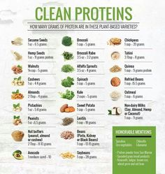 Vegetarian protein - Clean Proteins Tosca Reno [There are many wonderful plantbased proteins to choose from when you eat clean Quinoa is one of my favorites!] vegan protein, vegetarian protein, what to eat, plant ba Protein Mug Cakes, Protein Desserts, High Protein Recipes, Healthy Protein, Healthy Recipes, Foods High In Protein, High Protein Vegetables, Protein List, Protein Cookies