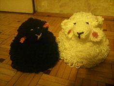 Biały baran z czarną owcą