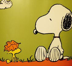 Snoopy and Woodstock :)