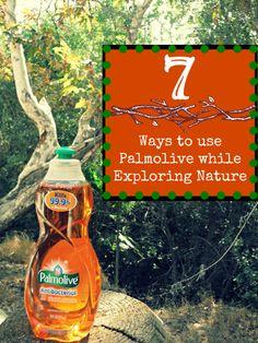 7 ways to use Palmolive Dish Soap while exploring nature — SoCal Pocket Memories Palmolive Dish Soap, Dish Detergent, Exploring, Cleaning, Memories, Pocket, Tips, Nature, Shop