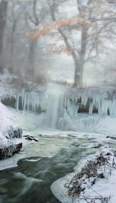 Frozen winter scene