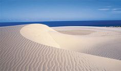 Fraser Island, Australia - Largest sand island in the world. This place is a trip & absolutely stunning!
