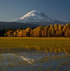 Nestled near the foot of Mount Adams in Washington's Cascades Range, Conboy Lake National Wildlife Refuge is a scenic gem. Conboy Lake's lush seasonal marshes and vibrant forests beckon to both visitors and wildlife. Located within an easy drive of...