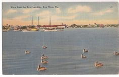 vintage Key West Florida, View from the Boat Landing, postmarked 1949