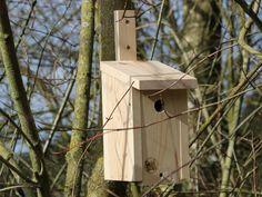 Meisenkasten von Spross & Leiter Thing 1, Bird, Outdoor Decor, Home Decor, Kinds Of Birds, Enemies, Ladder, First Aid, Timber Wood