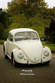 Omg, this Beetle is my favorite by far!.