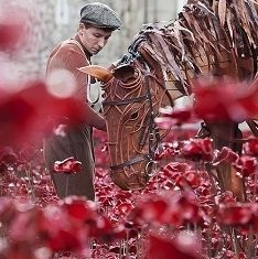 Michael Morpurgo, the bestselling author of War Horse, and 'star' of the play, Joey paid a visit to the major art installation Blood Swept Lands and Seas of Red at the Tower of London yesterday (19 October). The installation of poppies has been created in remembrance of the First World War as part of the centenary of the conflict's outbreak in 1914.