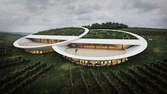 Sauska Winery in Hungary by BORD Architectural Studio Green Architecture, Amazing Architecture, Contemporary Architecture, Landscape Architecture, Architecture Design, Organic Architecture, Contemporary Landscape, Modern Contemporary, Big Building