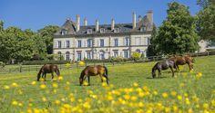 Le Château d'Ygrande dans l'#Allier