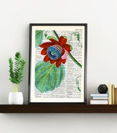 Vintage Book Print Dictionary or Encyclopedia Page Print- Book print Passiflora Passion Flower on Vintage Bookart art BPBB132