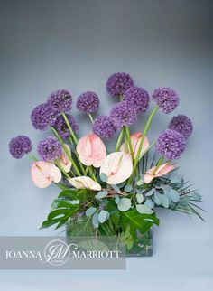 Corporate office diplay composed of alliums and pale pink anthurium. @joannamarriott #corporateflowers #Londonflorist